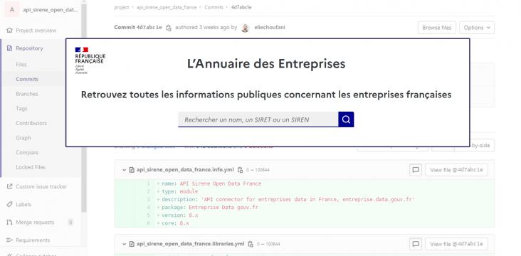 Capture d'écran du site api.adresse.gouv.fr