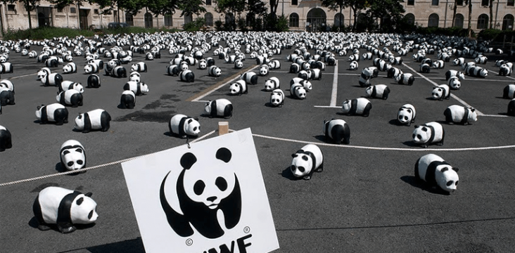 Eric CHAUVET Photography - WWF France