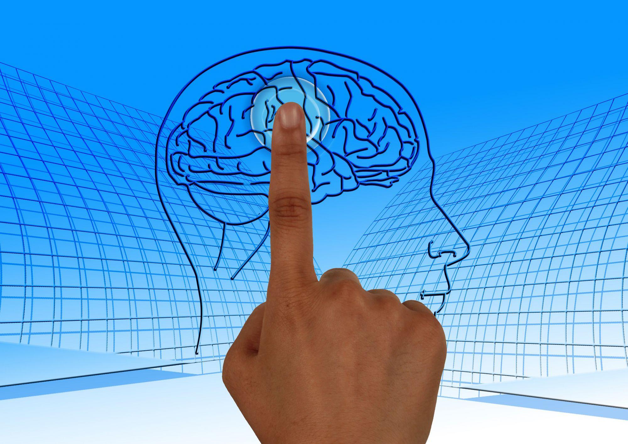 Photo la psychologie appliquée au désign