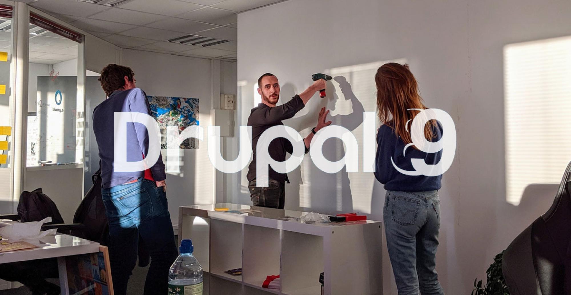 L'équipe bluedrop.fr se prépare à Drupal 9 - Image d'agrément